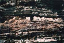 धार्मिक स्थल जन्तेढुङ्गा